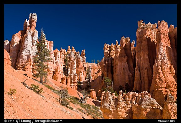 Hoodoos seen from below. Bryce Canyon National Park (color)