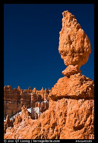 Balanced rock in pink limestone. Bryce Canyon National Park, Utah, USA.