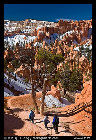 Hiking into amphitheater. Bryce Canyon National Park, Utah, USA.