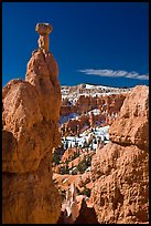 Hoodoos capped by dolomite rocks and amphitheater. Bryce Canyon National Park, Utah, USA. (color)