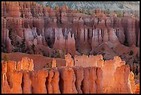 Rows of hoodoos. Bryce Canyon National Park ( color)