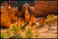 Aspen and Thors Hammer in fall. Bryce Canyon National Park, Utah, USA. (color)