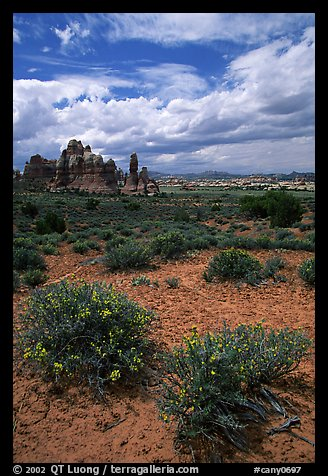 Sandstone towers in sandy flat basin, Chesler Park. Canyonlands National Park (color)