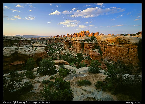 Elephant Canyon at sunset, the Needles. Canyonlands National Park, Utah, USA.
