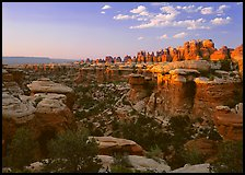 Needles at sunset. Canyonlands National Park ( color)