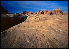 Sandstone swirls and Needles near Elephant Hill at sunrise, the Needles. Canyonlands National Park, Utah, USA.