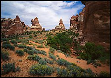 Sandstone towers, Chesler Park. Canyonlands National Park ( color)