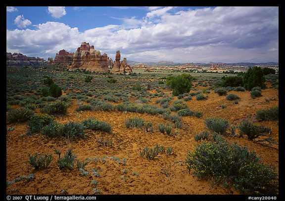 Chesler Park. Canyonlands National Park (color)