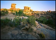 Spires at Big Spring Canyon, Needles District. Canyonlands National Park, Utah, USA.