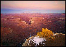 Gorge and plateau at sunset, Island in the Sky. Canyonlands National Park, Utah, USA. (color)
