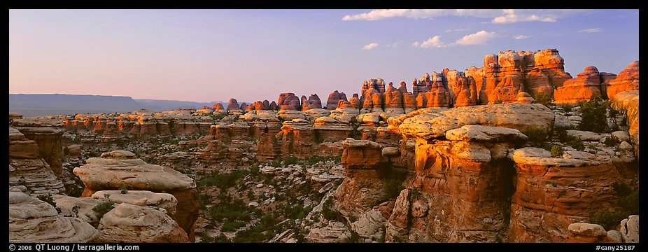 Colorful spires of Cedar Mesa Sandstone, sunset, Needles District. Canyonlands National Park (color)