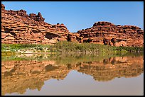 Cliffs reflected in Colorado River. Canyonlands National Park ( color)
