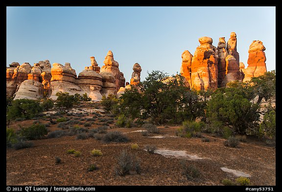 Cryptobiotic soil and pinnacles,. Canyonlands National Park (color)