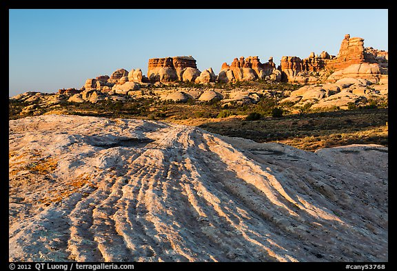 Sandstone swirls and Doll House spires, early morning. Canyonlands National Park (color)