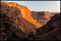 Cliffs at sunset, Island in the Sky. Canyonlands National Park, Utah, USA.