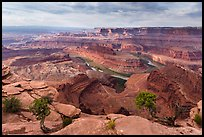 Gooseneck of the Colorado River from Dead Horse Point. Canyonlands National Park ( color)