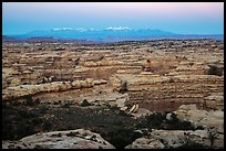 Maze canyons and snowy mountains at dusk. Canyonlands National Park, Utah, USA. (color)