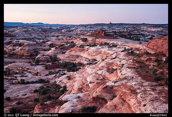 Jasper Canyon from Petes Mesa at dawn, Maze District. Canyonlands National Park (color)