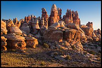 Dollhouse spires at sunrise, Maze District. Canyonlands National Park, Utah, USA.