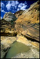 Pockets of water in Waterpocket Fold near Capitol Gorge. Capitol Reef National Park ( color)