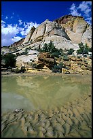 Pockets of water in Waterpocket Fold near Capitol Gorge. Capitol Reef National Park, Utah, USA.