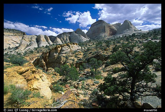 Plateau and domes above Capitol Gorge. Capitol Reef National Park (color)