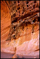 Holes in rock, Capitol Gorge. Capitol Reef National Park, Utah, USA.