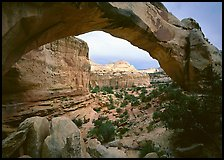 Hickman Bridge, mid-day. Capitol Reef National Park, Utah, USA.