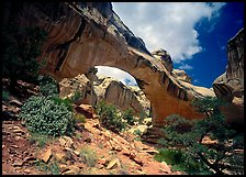 Hickman natural bridge from below. Capitol Reef National Park, Utah, USA.