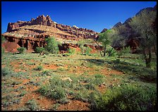 Castle Meadow and Castle, spring. Capitol Reef National Park, Utah, USA. (color)