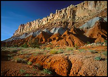 Wildflowers and Waterpocket Fold, afternoon. Capitol Reef National Park, Utah, USA.