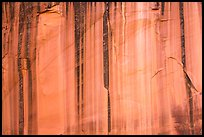 Sandstone cliff with desert varnish. Capitol Reef National Park, Utah, USA. (color)