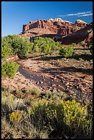 Stream and cliffs. Capitol Reef National Park ( color)