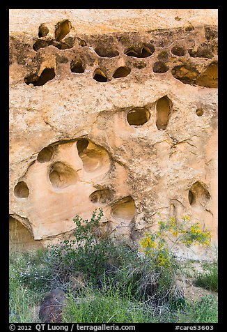 Rock with holes, Fremont River gorge. Capitol Reef National Park (color)