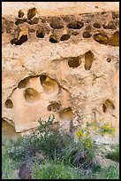 Rock with holes, Fremont River gorge. Capitol Reef National Park ( color)
