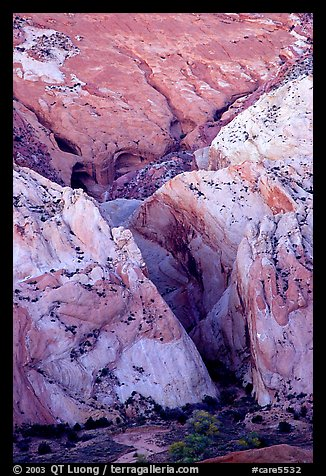 Entrance of Halls Creek Narrows. Capitol Reef National Park, Utah, USA.