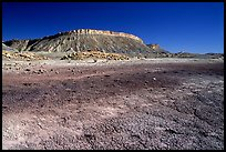 Colorful Bentonite flats and cliffs. Capitol Reef National Park, Utah, USA. (color)