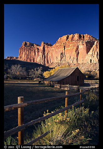 Fence, Old barn, horse and cliffs, Fruita. Capitol Reef National Park (color)