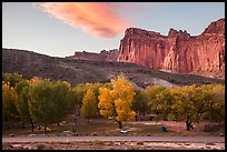 Fruita Campground and cliffs at sunset. Capitol Reef National Park, Utah, USA. (color)