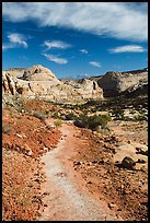 Primitive trail on natural slab. Capitol Reef National Park, Utah, USA. (color)