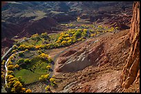 Fruita in the fall from Rim Overlook. Capitol Reef National Park, Utah, USA. (color)