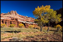 Castle Meadow and Castle in autumn. Capitol Reef National Park ( color)