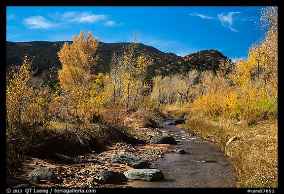 Pleasant Creek in autumn. Capitol Reef National Park (color)