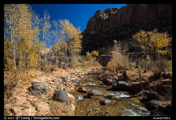 Pleasant Creek, cottowoods, and cliff in autumn. Capitol Reef National Park (color)