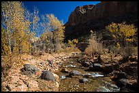 Pleasant Creek, cottowoods, and cliff in autumn. Capitol Reef National Park ( color)