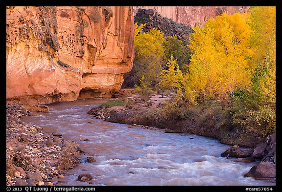 Fremont River, cottonwoods, and cliffs in autumn. Capitol Reef National Park (color)