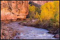 Fremont River, cottonwoods, and cliffs in autumn. Capitol Reef National Park, Utah, USA. (color)
