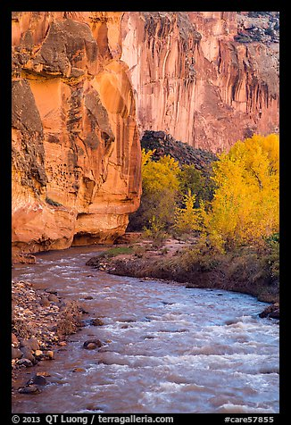 Bend of the Fremont River, cottonwoods, and cliffs in autumn. Capitol Reef National Park (color)