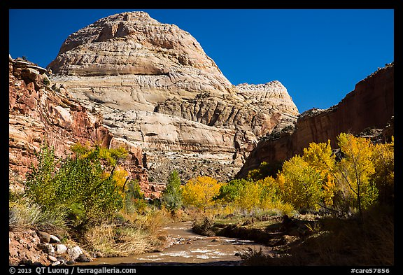 Capitol Dome in autumn. Capitol Reef National Park (color)