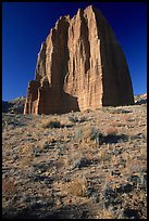 Temple of the Moon, Cathedral Valley, morning. Capitol Reef National Park, Utah, USA.